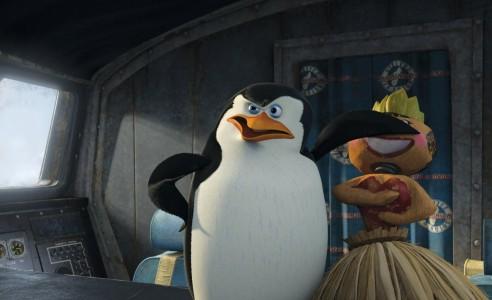 Pinguin de Madagascar